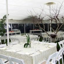 קירוי עמיד לגשם- אוהל מתיחה - אירוע חתונה- בית פרטי