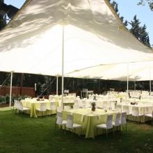 רשת צל בחתונה- פיין קלאב